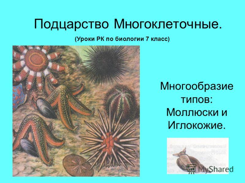 Подцарство Многоклеточные. Многообразие типов: Моллюски и Иглокожие. (Уроки РК по биологии 7 класс)