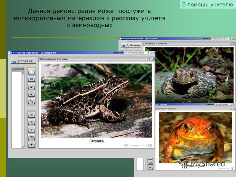 В помощь учителю Данная демонстрация может послужить иллюстративным материалом к рассказу учителя о земноводных
