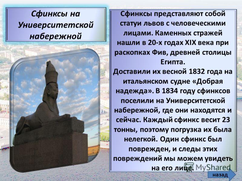 Сфинксы представляют собой статуи львов с человеческими лицами. Каменных стражей нашли в 20-х годах XIX века при раскопках Фив, древней столицы Египта. Доставили их весной 1832 года на итальянском судне «Добрая надежда». В 1834 году сфинксов поселили