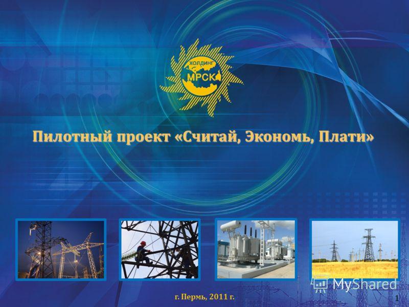 Пилотный проект «Считай, Экономь, Плати» г. Пермь, 2011 г. 1