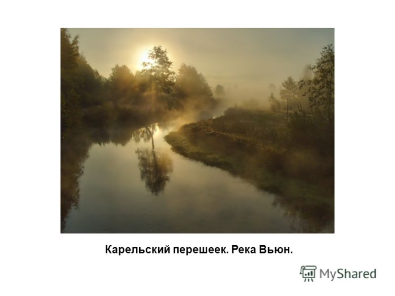 Карельский перешеек. Река Вьюн.