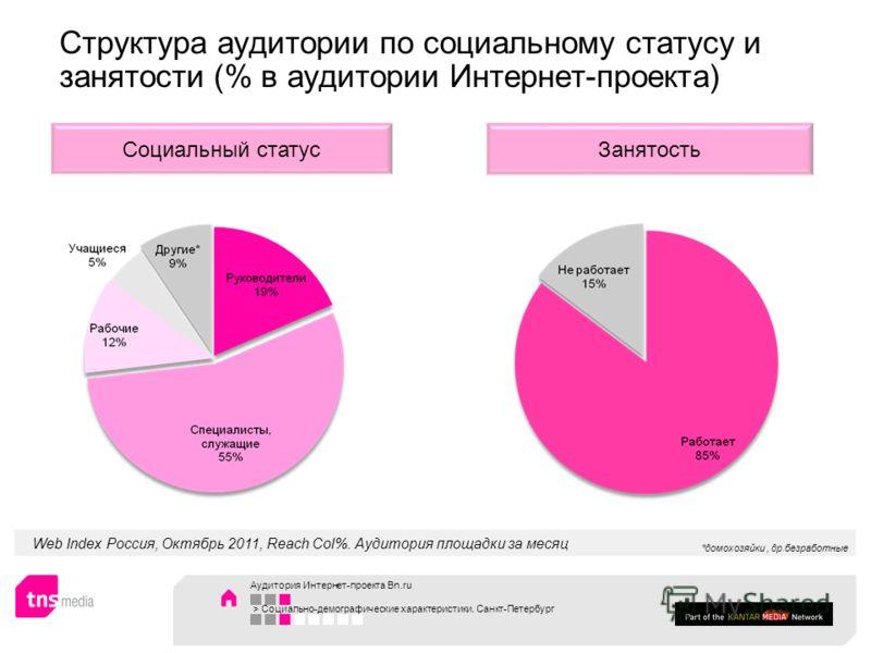 Web Index Россия, Октябрь 2011, Reach Col%. Аудитория площадки за месяц ЗанятостьСоциальный статус Структура аудитории по социальному статусу и занятости (% в аудитории Интернет-проекта) *домохозяйки, др.безработные Аудитория Интернет-проекта Bn.ru >
