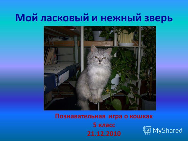 Мой ласковый и нежный зверь Познавательная игра о кошках 5 класс 21.12.2010