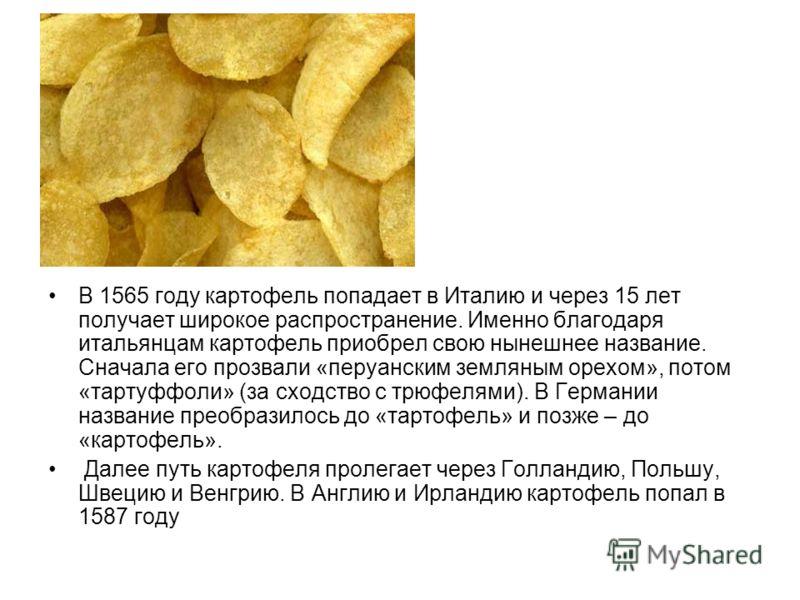 В 1565 году картофель попадает в Италию и через 15 лет получает широкое распространение. Именно благодаря итальянцам картофель приобрел свою нынешнее название. Сначала его прозвали «перуанским земляным орехом», потом «тартуффоли» (за сходство с трюфе