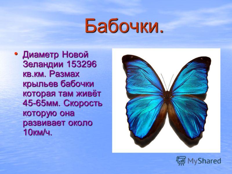 Бабочки. Диаметр Новой Зеландии 153296 кв.км. Размах крыльев бабочки которая там живёт 45-65мм. Скорость которую она развивает около 10км/ч. Диаметр Новой Зеландии 153296 кв.км. Размах крыльев бабочки которая там живёт 45-65мм. Скорость которую она р