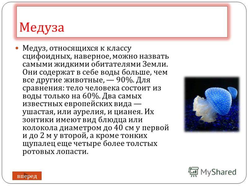 Медуза Медуз, относящихся к классу сцифоидных, наверное, можно назвать самыми жидкими обитателями Земли. Они содержат в себе воды больше, чем все другие животные, 90%. Для сравнения : тело человека состоит из воды только на 60%. Два самых известных е