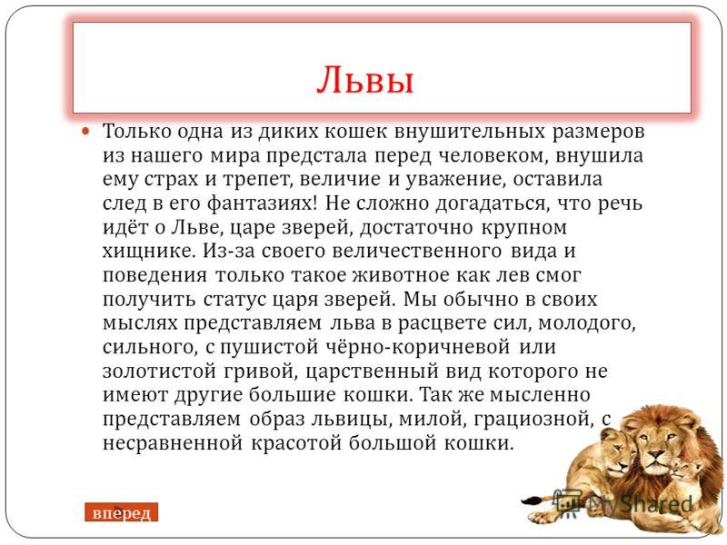 Львы Только одна из диких кошек внушительных размеров из нашего мира предстала перед человеком, внушила ему страх и трепет, величие и уважение, оставила след в его фантазиях ! Не сложно догадаться, что речь идёт о Льве, царе зверей, достаточно крупно