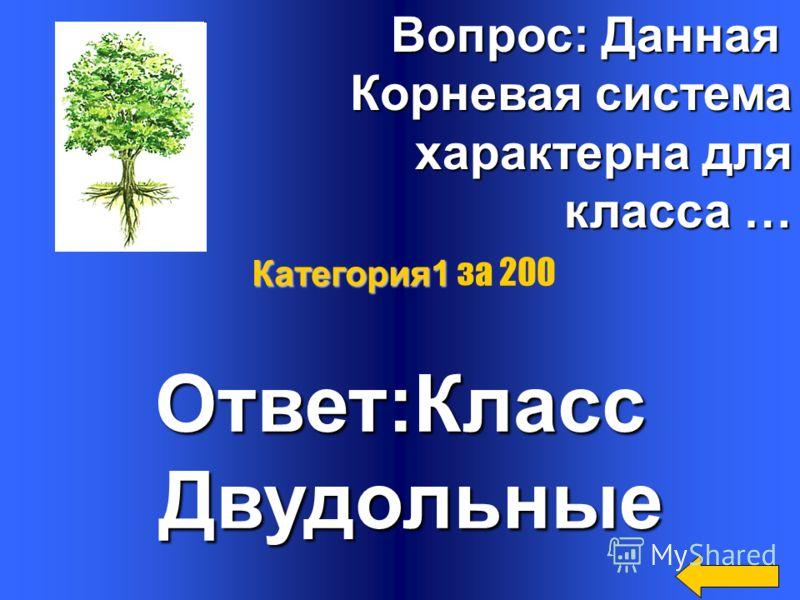 Вопрос: Что такое псилофиты? псилофиты? Ответ: первые наземные растения наземные растения Категория1 Категория1 за 100