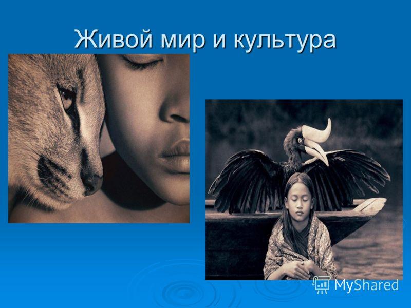 Живой мир и культура