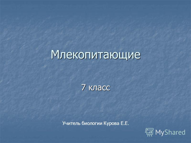Млекопитающие 7 класс Учитель биологии Курова Е.Е.