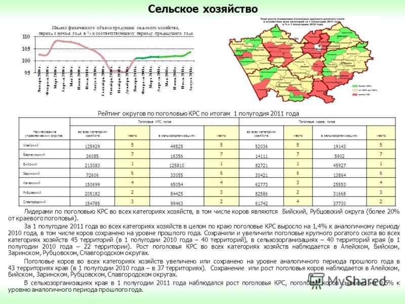 Сельское хозяйство Лидерами по поголовью КРС во всех категориях хозяйств, в том числе коров являются Бийский, Рубцовский округа (более 20% от краевого поголовья). За 1 полугодие 2011 года во всех категориях хозяйств в целом по краю поголовье КРС выро