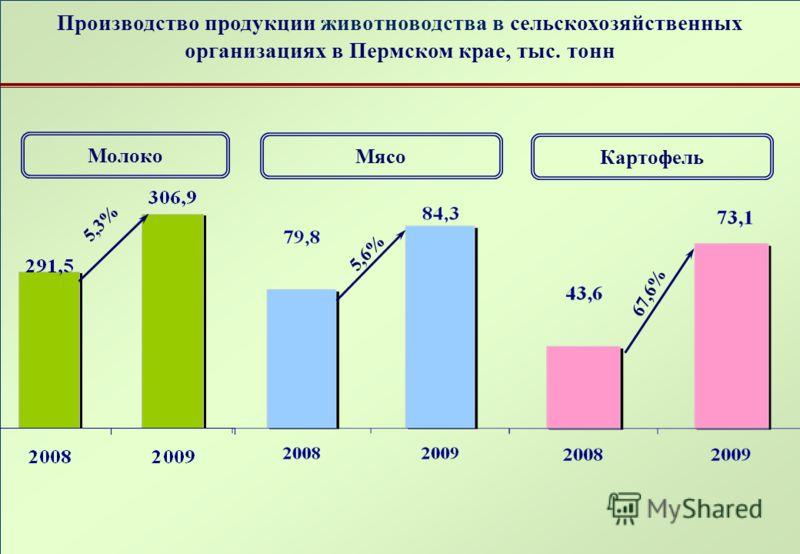 Производство продукции животноводства в сельскохозяйственных организациях в Пермском крае, тыс. тонн Картофель Молоко 67,6% 5,3% Мясо 5,6%