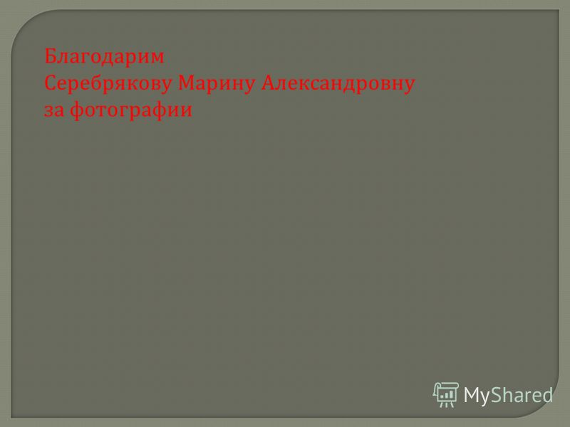 Благодарим Серебрякову Марину Александровну за фотографии