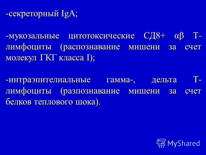 -секреторный IgA; -мукозальные цитотоксические СД8+ αβ Т- лимфоциты (распознавание мишени за счет молекул ГКГ класса I); -интраэпителиальные гамма-, дельта Т- лимфоциты (разпознавание мишени за счет белков теплового шока). -секреторный IgA; -мукозаль