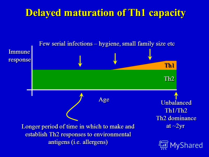 Th1 Th2 Unbalanced Th1/Th2 Th2 dominance at ~2yr Unbalanced Th1/Th2 Th2 dominance at ~2yr Delayed maturation of Th1 capacity Few serial infections – hygiene, small family size etc Age Immune response Immune response Longer period of time in which to