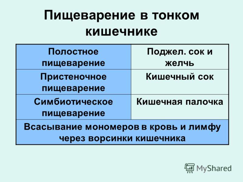 Сок Кишечный