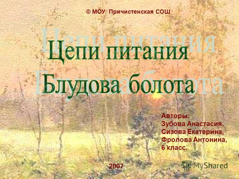 Авторы: Зубова Анастасия, Сизова Екатерина, Фролова Антонина, 6 класс. 2007 © МОУ Причистенская СОШ