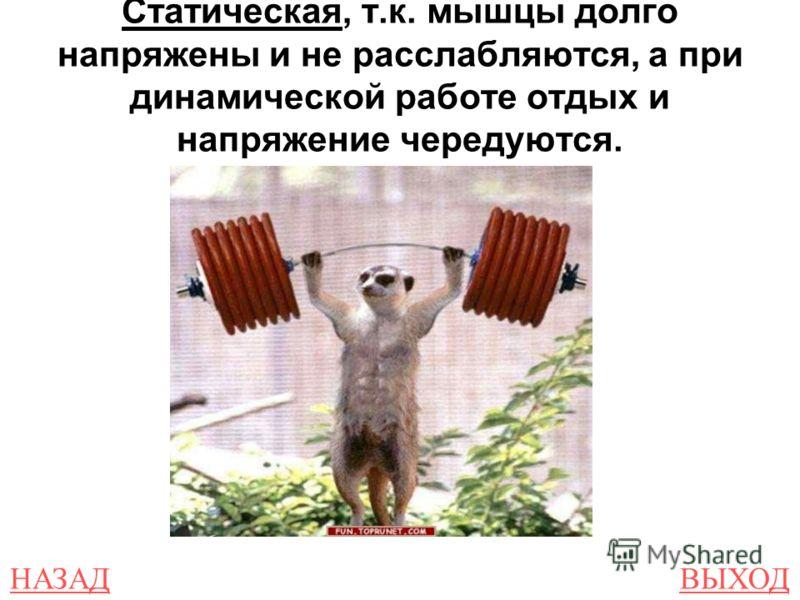 НАЗАДВЫХОД Статическая, т.к. мышцы долго напряжены и не расслабляются, а при динамической работе отдых и напряжение чередуются.