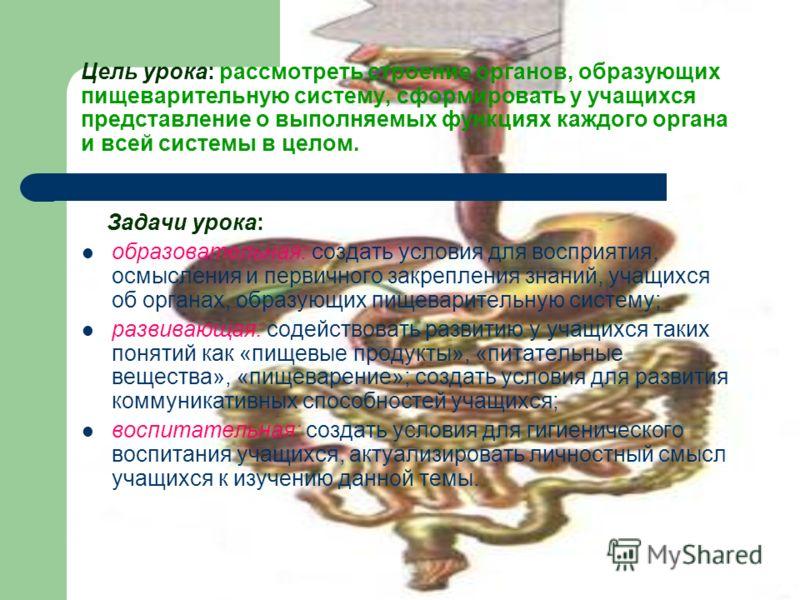 Цель урока: рассмотреть строение органов, образующих пищеварительную систему, сформировать у учащихся представление о выполняемых функциях каждого органа и всей системы в целом. Задачи урока: образовательная: создать условия для восприятия, осмыслени
