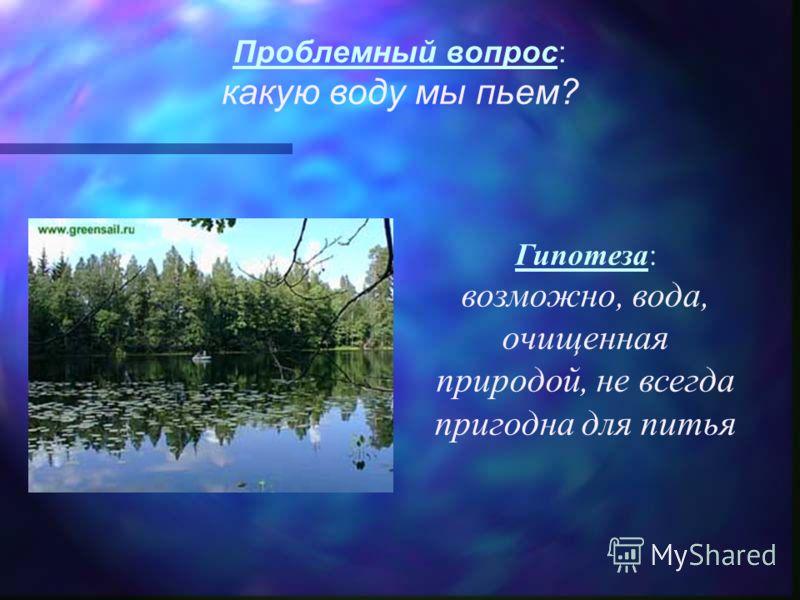 Проблемный вопрос: какую воду мы пьем? Гипотеза: возможно, вода, очищенная природой, не всегда пригодна для питья