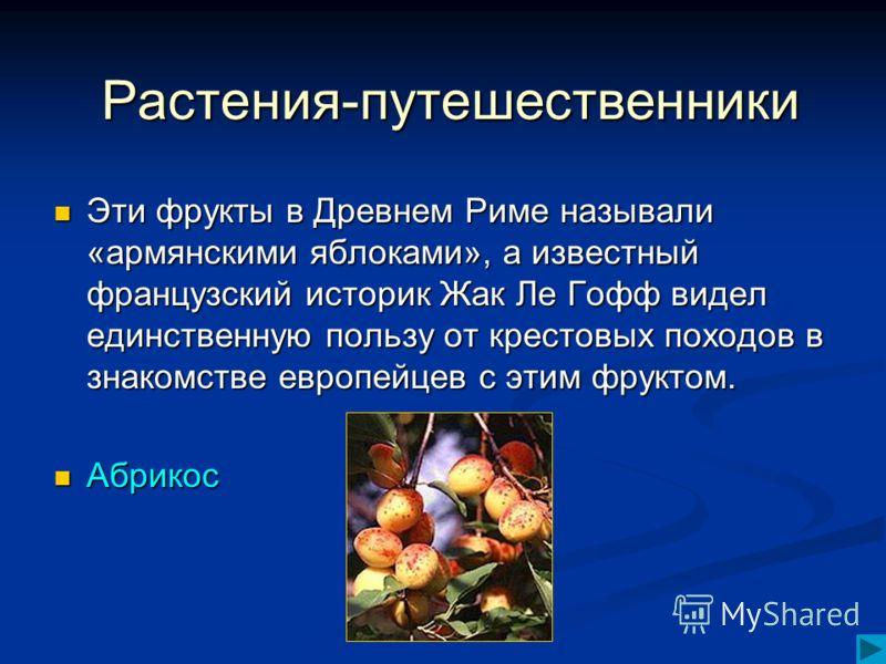 Эти фрукты в Древнем Риме называли «армянскими яблоками», а известный французский историк Жак Ле Гофф видел единственную пользу от крестовых походов в знакомстве европейцев с этим фруктом. Эти фрукты в Древнем Риме называли «армянскими яблоками», а и