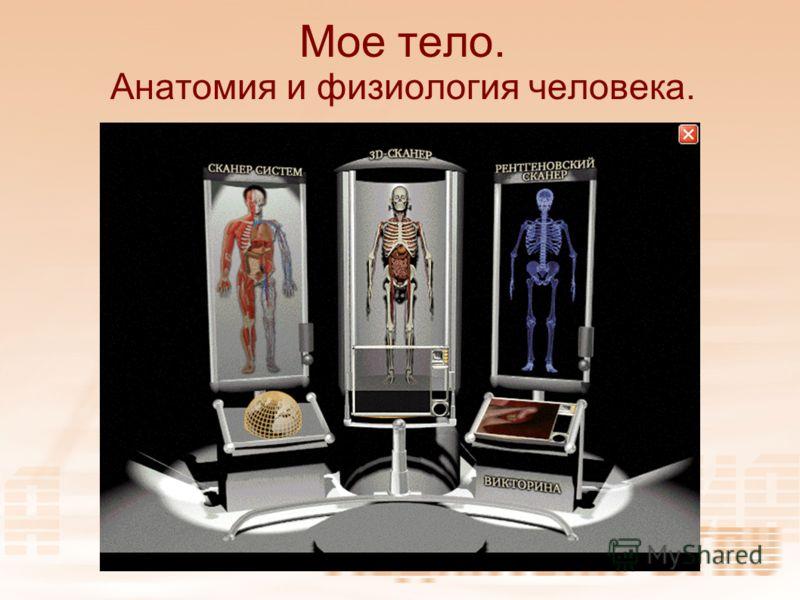 Мое тело. Анатомия и физиология человека.