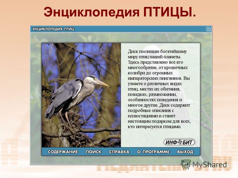 Энциклопедия ПТИЦЫ.
