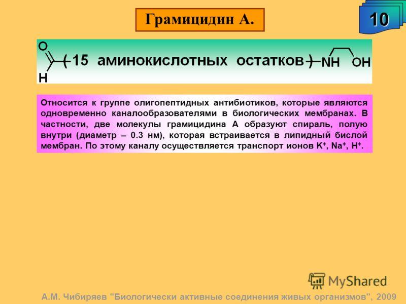 Грамицидин А. 10 А.М. Чибиряев
