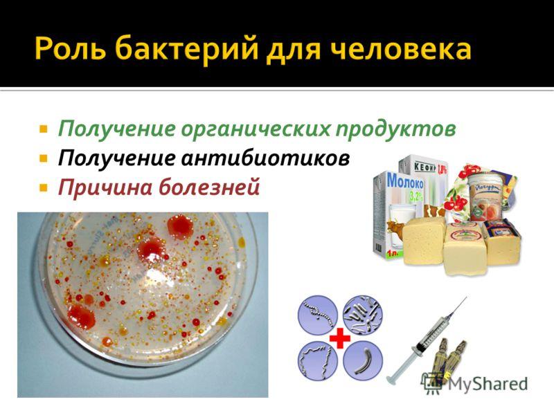 Получение органических продуктов Получение антибиотиков Причина болезней