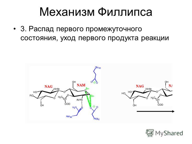 Механизм Филлипса 3. Распад первого промежуточного состояния, уход первого продукта реакции