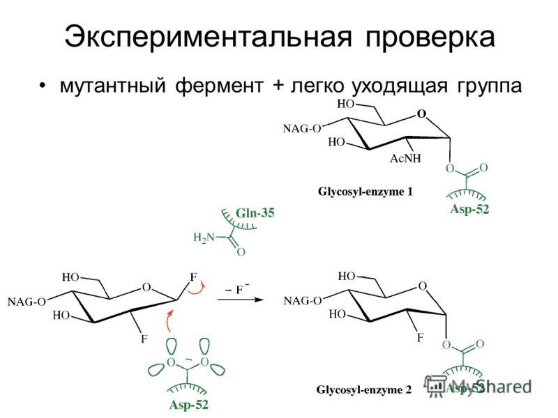 мутантный фермент + легко уходящая группа Экспериментальная проверка