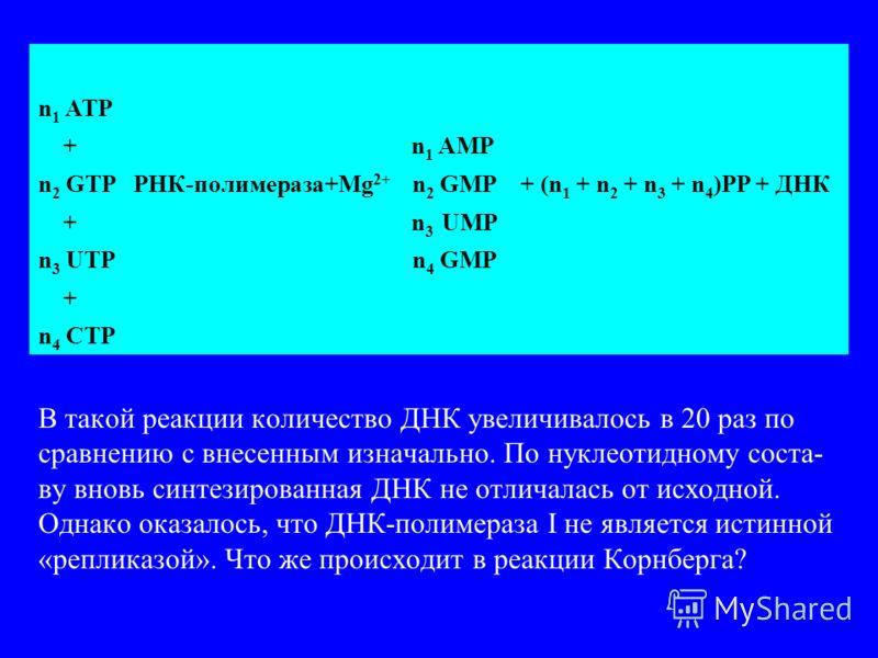 n 1 ATP + n 1 AMP n 2 GTP РНК-полимераза+Mg 2+ n 2 GMP + (n 1 + n 2 + n 3 + n 4 )PP + ДНК + n 3 UMP n 3 UTP n 4 GMP + n 4 CTP В такой реакции количество ДНК увеличивалось в 20 раз по сравнению с внесенным изначально. По нуклеотидному соста- ву вновь