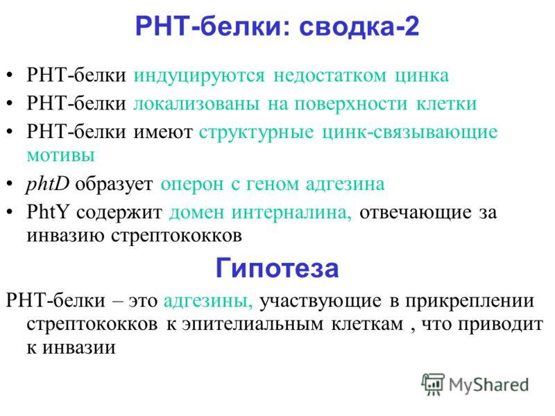 PHТ-белки: сводка-2 PHT-белки индуцируются недостатком цинка PHT-белки локализованы на поверхности клетки PHT-белки имеют структурные цинк-связывающие мотивы phtD образует оперон с геном адгезина PhtY содержит домен интерналина, отвечающие за инвазию