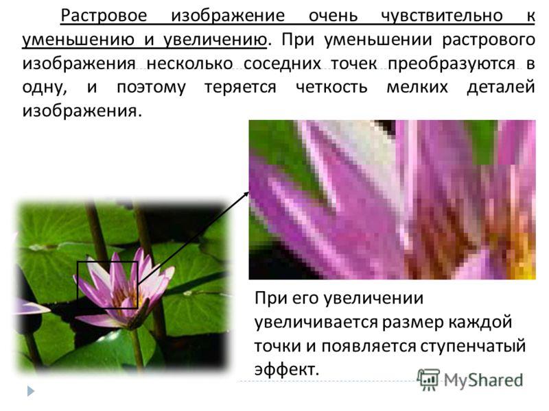 Растровое изображение очень чувствительно к уменьшению и увеличению. При уменьшении растрового изображения несколько соседних точек преобразуются в одну, и поэтому теряется четкость мелких деталей изображения. При его увеличении увеличивается размер