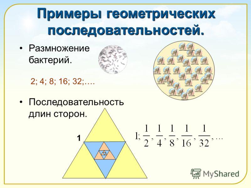 Примеры геометрических последовательностей. Размножение бактерий. Последовательность длин сторон. 2; 4; 8; 16; 32;…. 1