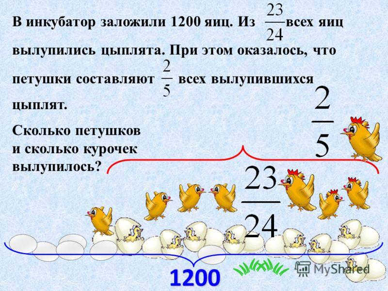 В инкубатор заложили 1200 яиц. Из всех яиц вылупились цыплята. При этом оказалось, что петушки составляют всех вылупившихся цыплят. Сколько петушков и сколько курочек вылупилось? 1200