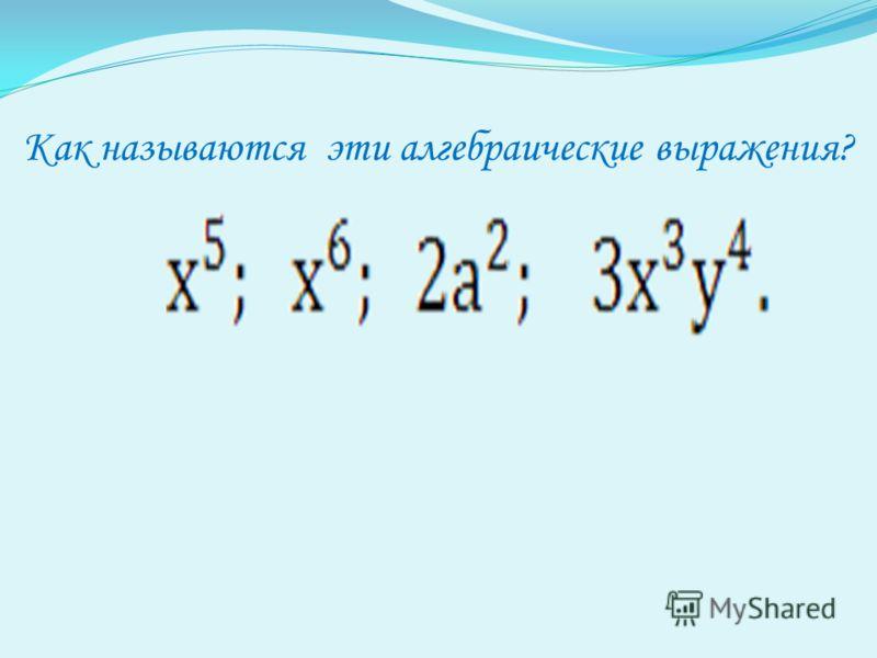 Как называются эти алгебраические выражения?