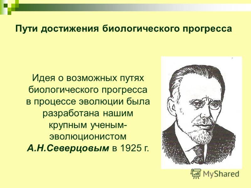 Пути достижения биологического прогресса Идея о возможных путях биологического прогресса в процессе эволюции была разработана нашим крупным ученым- эволюционистом А.Н.Северцовым в 1925 г.
