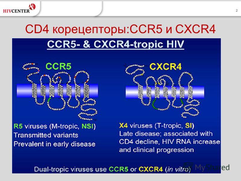 2 CD4 корецепторы:CCR5 и CXCR4