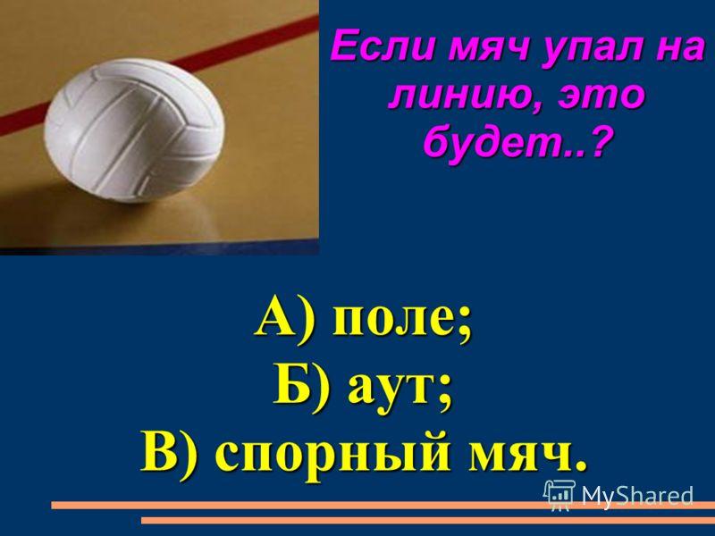 За площадкой можно ловить мяч? А) да; Б) нет; В) когда как.