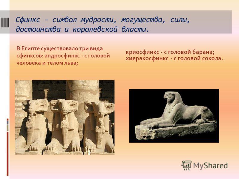 Сфинкс - символ мудрости, могущества, силы, достоинства и королевской власти. В Египте существовало три вида сфинксов: андросфинкс - с головой человека и телом льва; криосфинкс - с головой барана; хиеракосфинкс - с головой сокола.