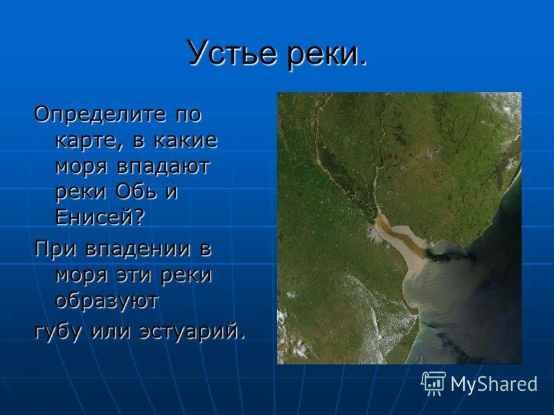 Устье реки. Определите по карте, в какие моря впадают реки Обь и Енисей? При впадении в моря эти реки образуют губу или эстуарий.