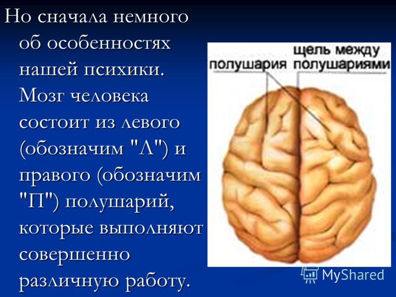 Но сначала немного об особенностях нашей психики. Мозг человека состоит из левого (обозначим Л) и правого (обозначим П) полушарий, которые выполняют совершенно различную работу.