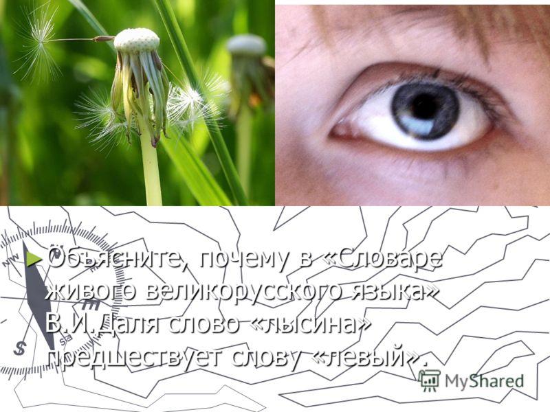 Объясните, почему в «Словаре живого великорусского языка» В.И.Даля слово «лысина» предшествует слову «левый».