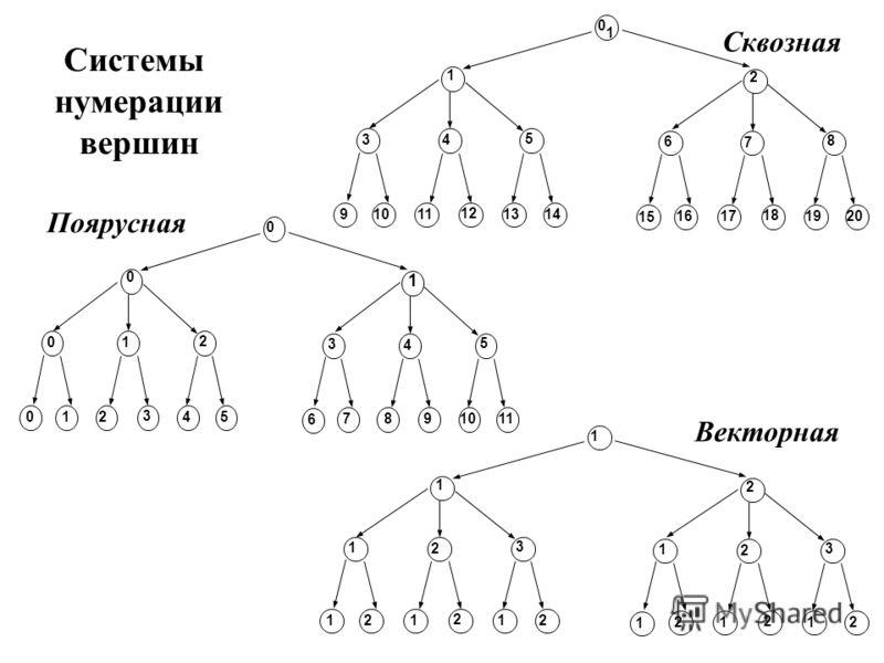 1 0 1 3 4 5 91011 12 1314 2 6 7 8 1617 18 1920 15 0 0 0 1 2 0 12 3 4 5 1 3 4 5 7 8 9 1011 6 1 1 1 2 3 1 2 1 2 1 2 2 1 2 3 2 1 2 1 2 1 Системы нумерации вершин Сквозная Поярусная Векторная