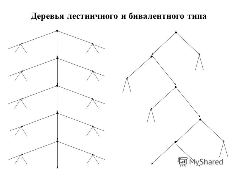 Деревья лестничного и бивалентного типа
