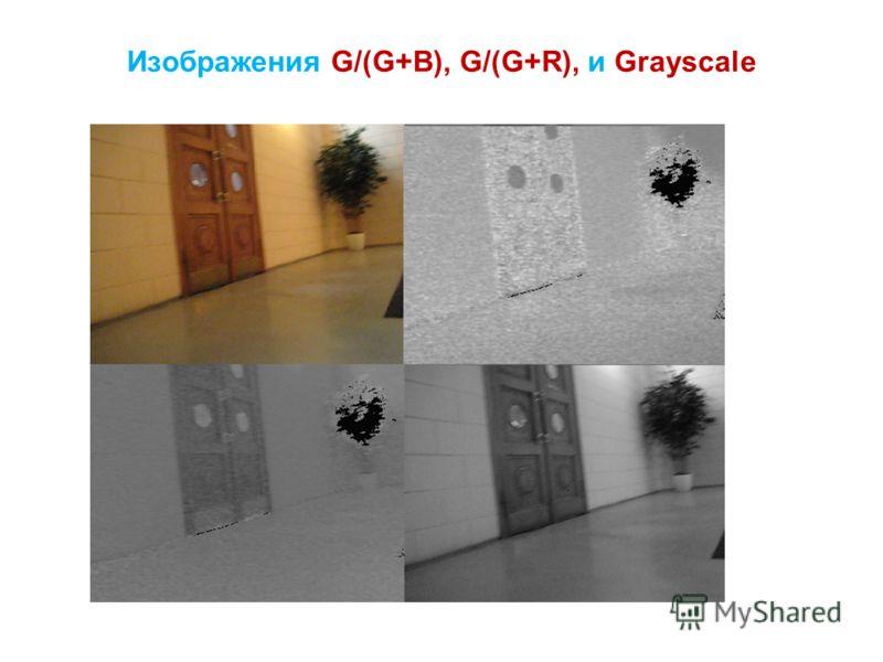 Изображения G/(G+B), G/(G+R), и Grayscale