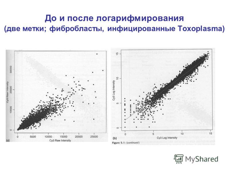 До и после логарифмирования (две метки; фибробласты, инфицированные Toxoplasma)