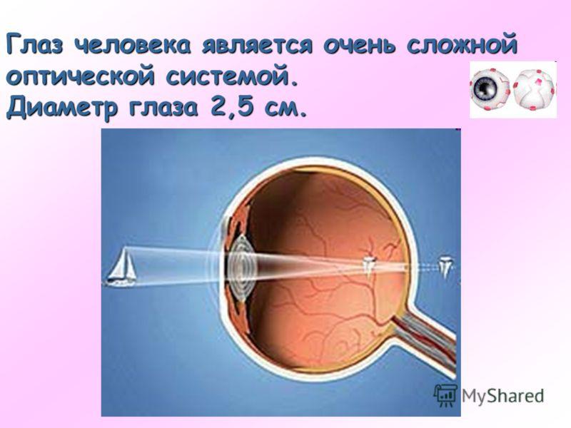 Глаз человека является очень сложной оптической системой. Диаметр глаза 2,5 см.