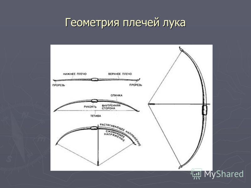 Геометрия плечей лука